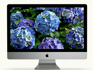 iMac with retina display
