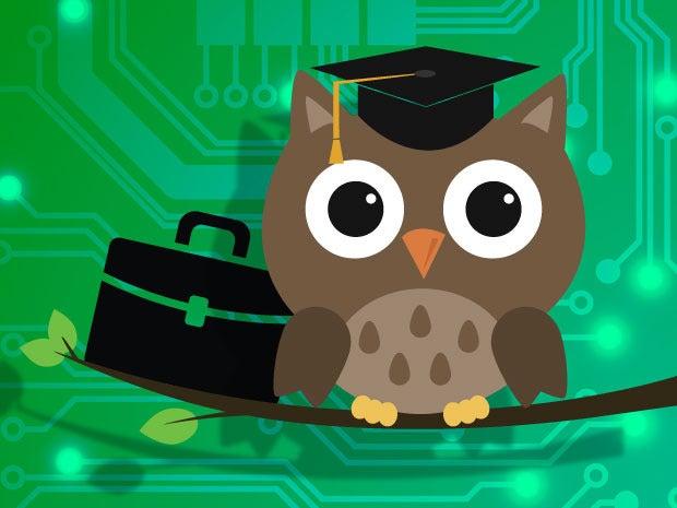 owl college graduate school briefcase