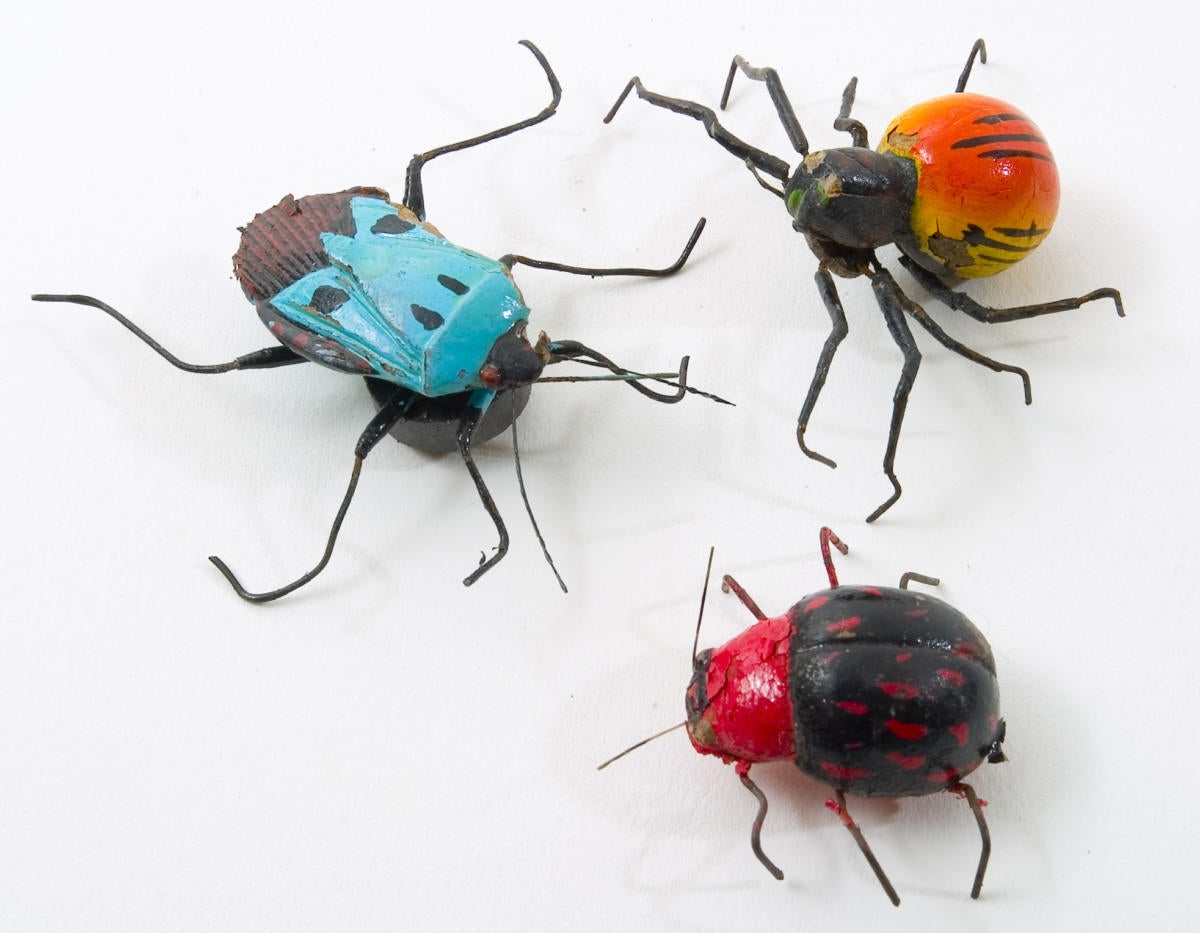 thinkstockphotos bugs ingram publishing