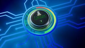 linux security lick public domain