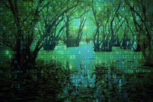 If your data lake turned into a data swamp, it might be time to take the next step